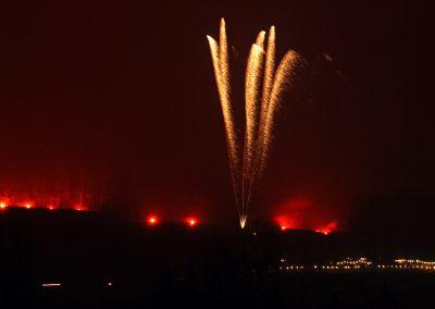 110096 Weinberg in Flammen