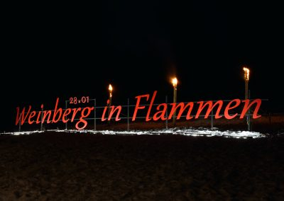 170027 Weinberg in Flammen